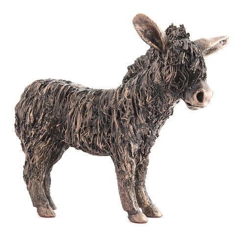 Donkey - Standing