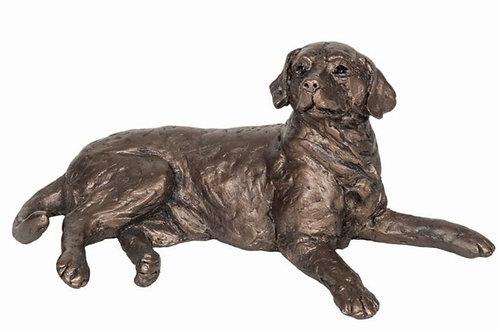 Meghan - Labrador lying