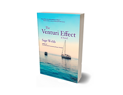 Venturi Effect.png