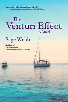 The Venturi Effect.jpg