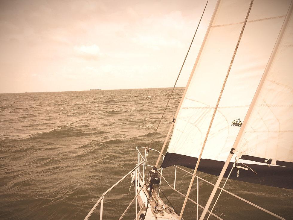In the Gulf.jpg