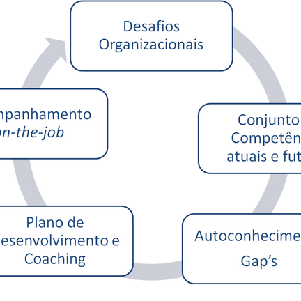 Coaching numa Perspectiva Estratégica