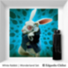 利基香水 White Rabbit Wonderland Set Edgardio Chilini