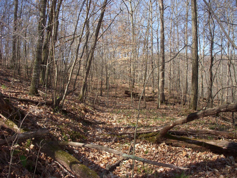 Running Creek 557AC (26).jpg