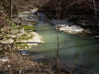 Scarbrough 560 acre parcel Running Creek