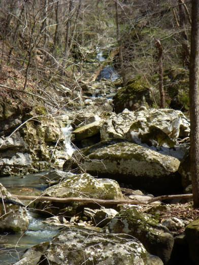 Running Creek 557AC (39).jpg