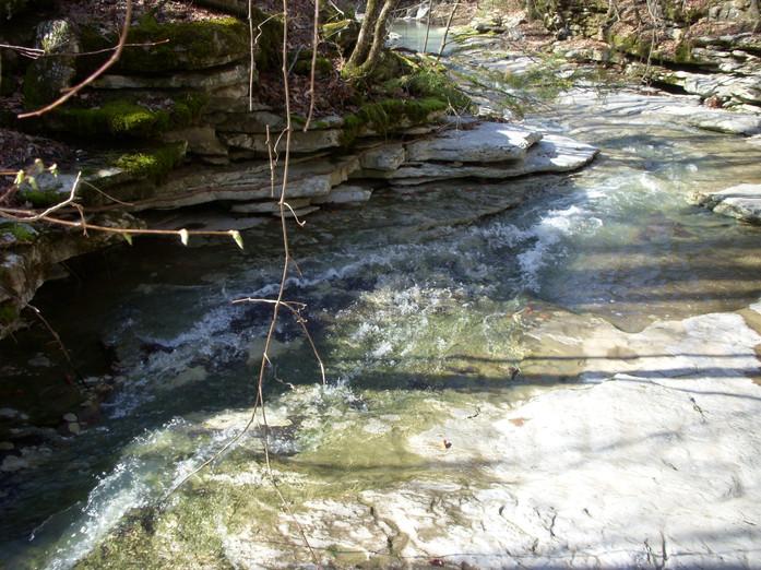 Running Creek 557AC (11).jpg