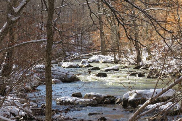 creekcold.jpg