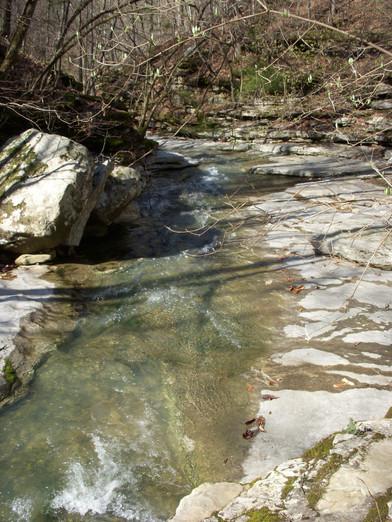 Running Creek 557AC (8).jpg