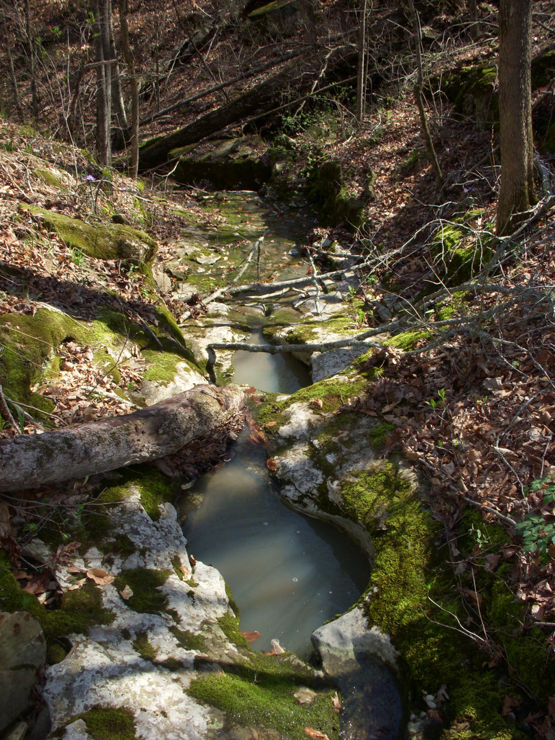 Running Creek 557AC (30).jpg