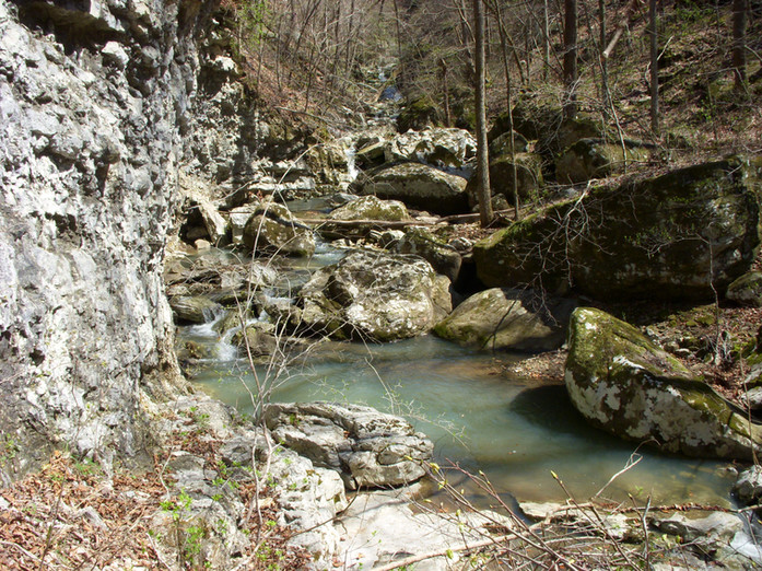 Running Creek 557AC (37).jpg