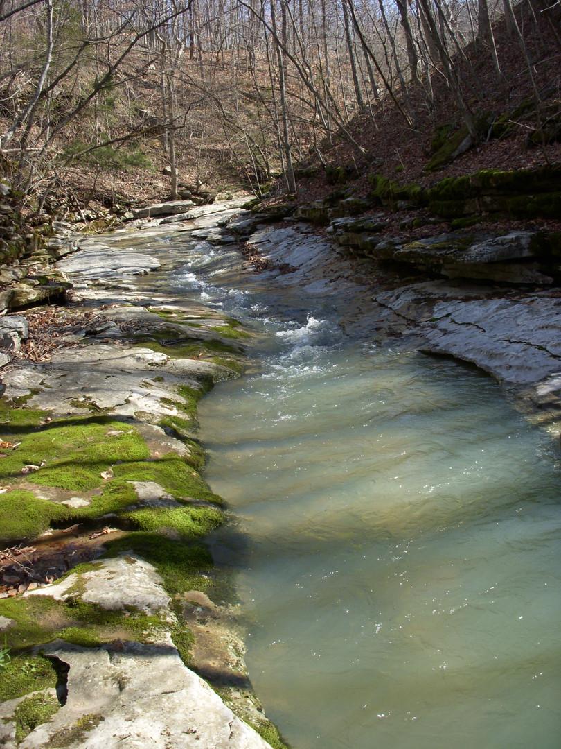 Running Creek 557AC (17).jpg