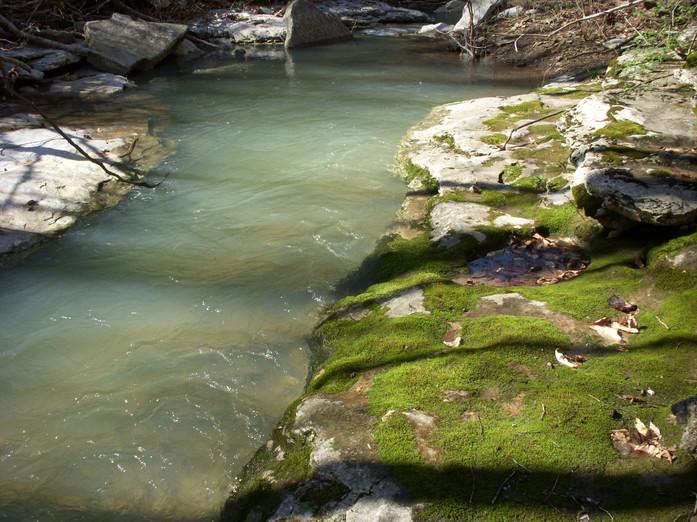 Running Creek 557AC (15).jpg