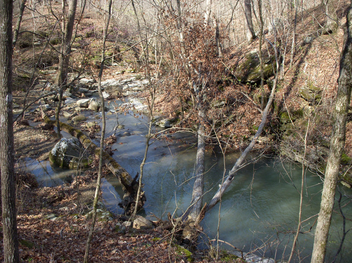 Running Creek 557AC (7).jpg