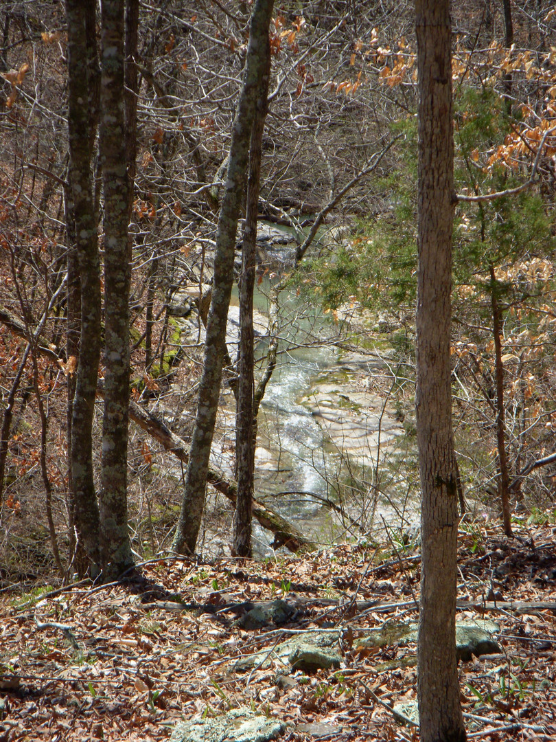 Running Creek 557AC (46).jpg