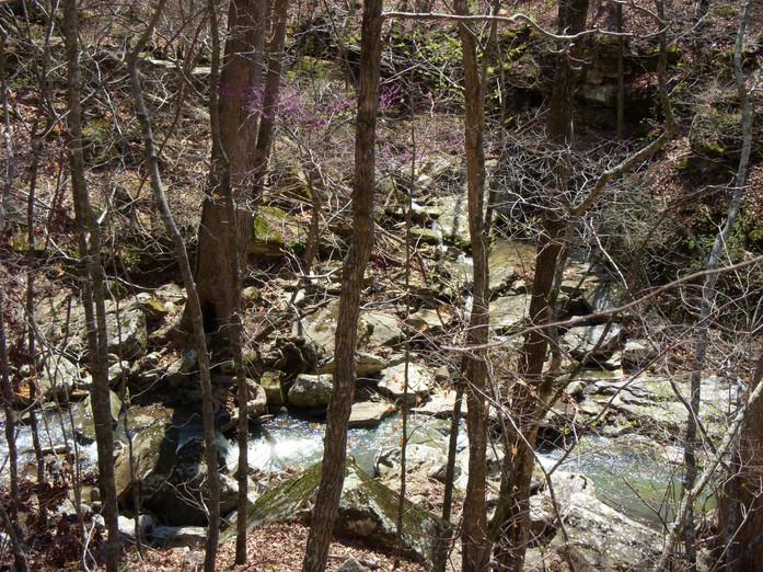 Running Creek 557AC (47).jpg