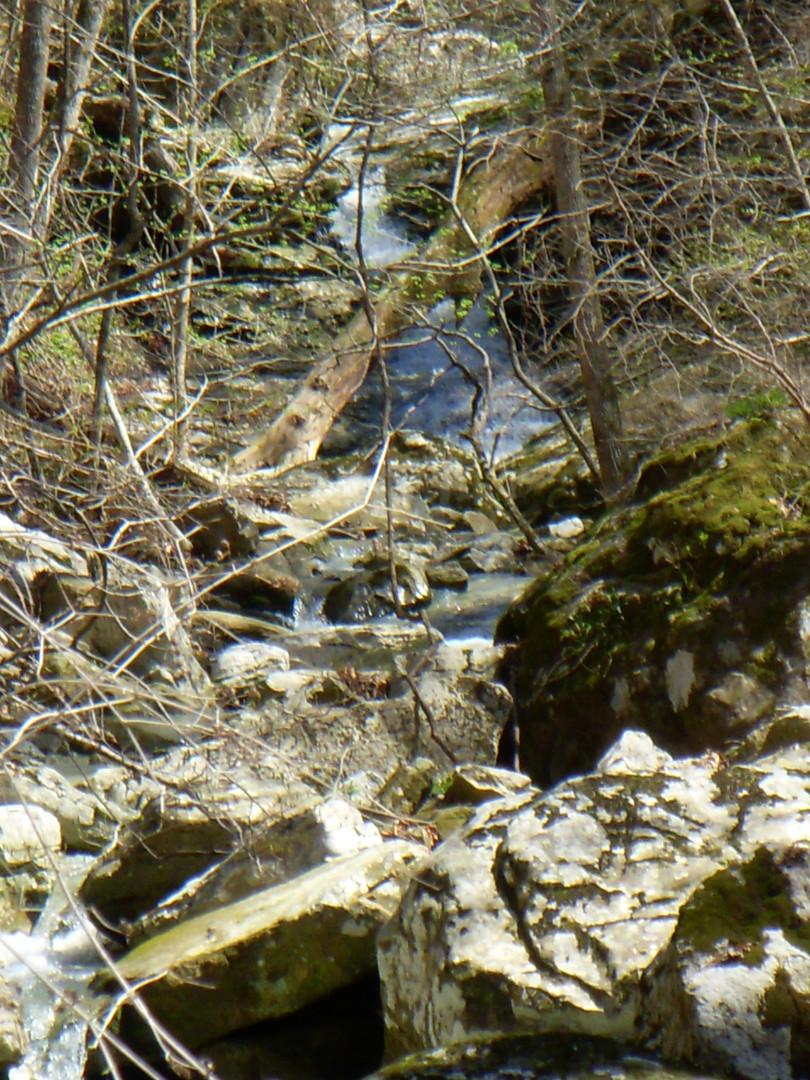 Running Creek 557AC (40).jpg