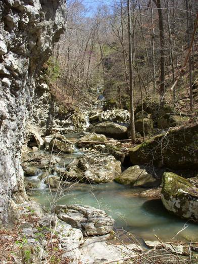 Running Creek 557AC (38).jpg