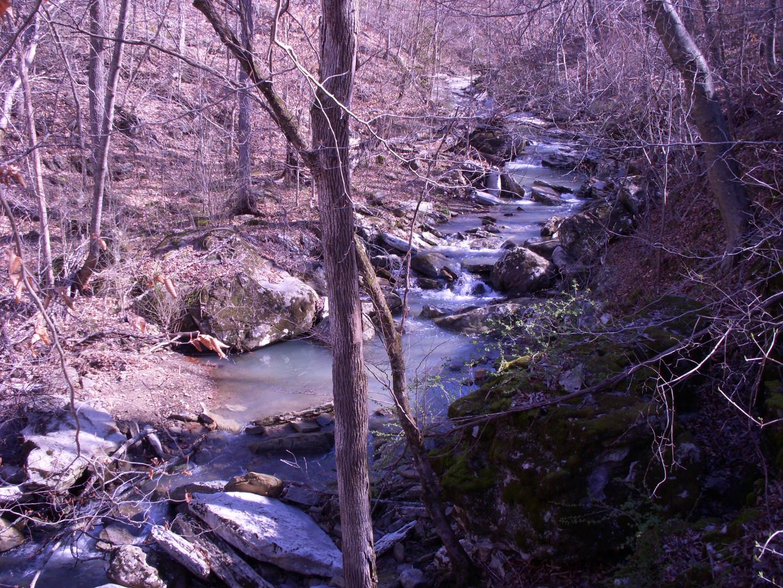 Running Creek 557AC (24).jpg