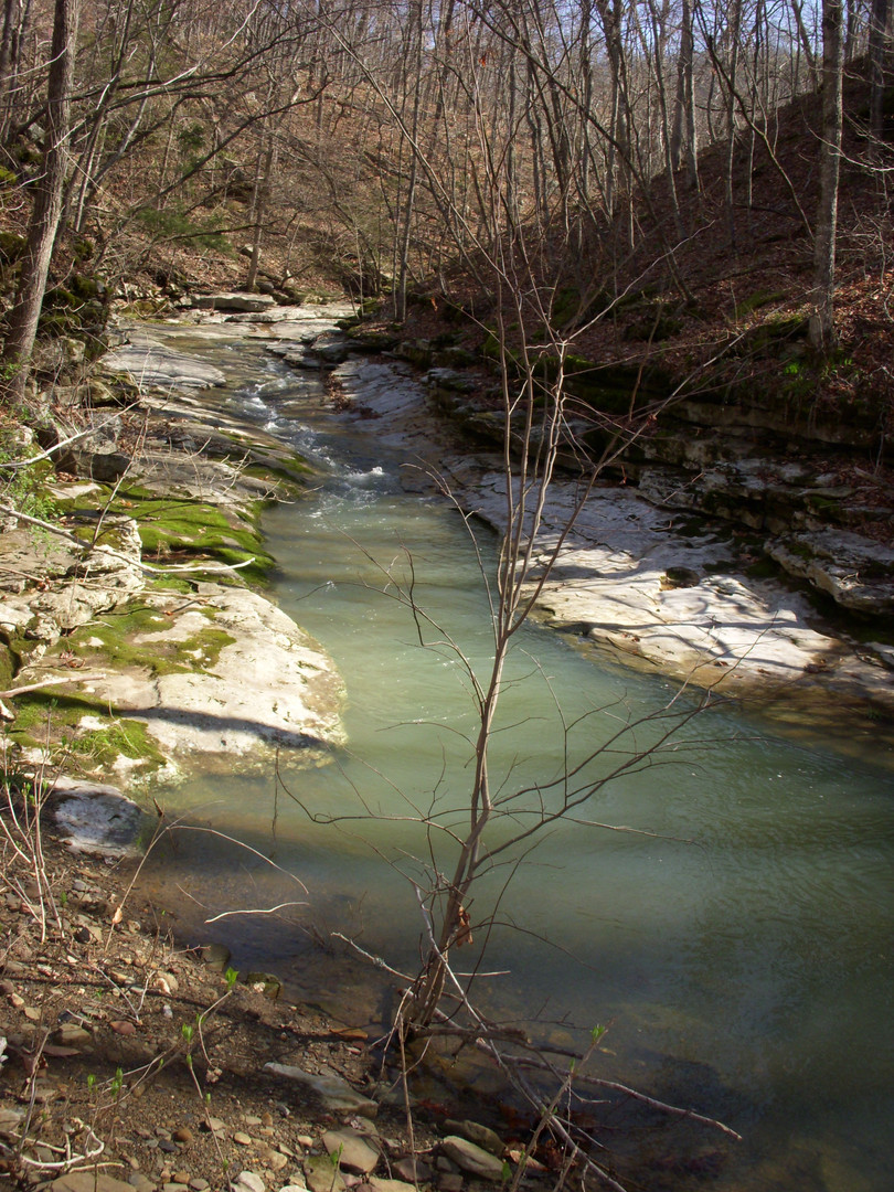 Running Creek 557AC (19).jpg