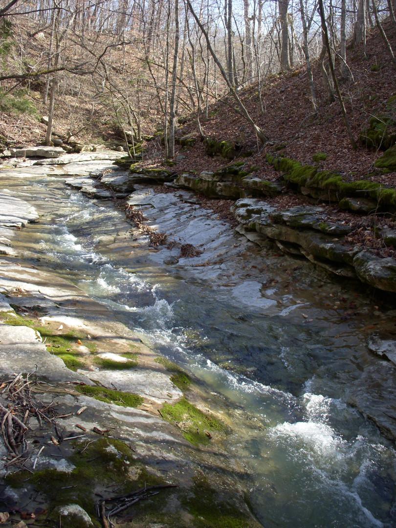 Running Creek 557AC (16).jpg