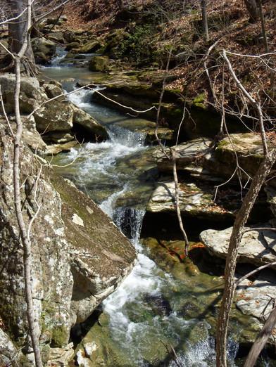 Running Creek 557AC (56).jpg