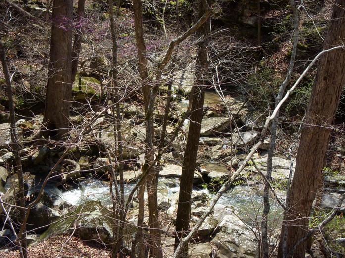 Running Creek 557AC (48).jpg