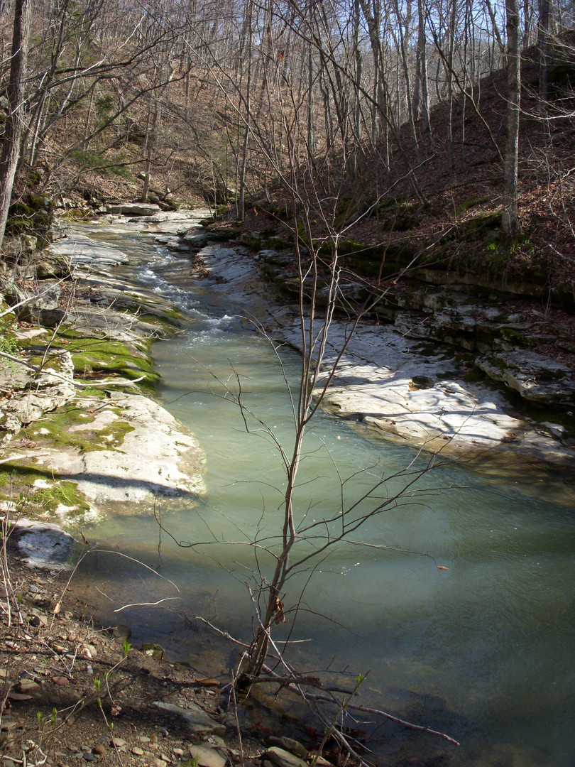 Running Creek 557AC (18).jpg