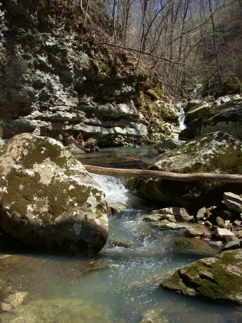 Running Creek 557AC (34).jpg