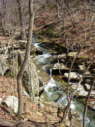 Running Creek 557AC (55).jpg