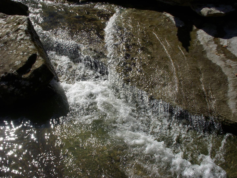 Running Creek 557AC (9).jpg