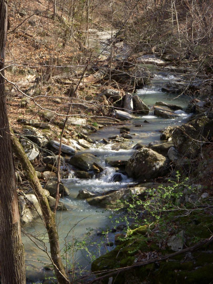 Running Creek 557AC (25).jpg