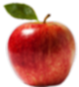 Apple Vector.png