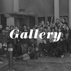 Catalyst Gallery.png