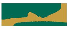 sali-web-logo.png