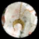 WEBCircle-Moon_edited.png