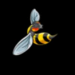 wasp2.png
