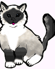 mitted.png