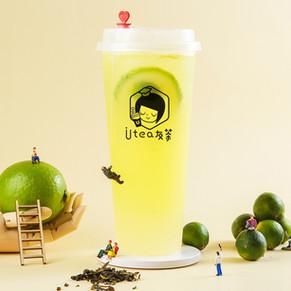Crash Lime Four Season