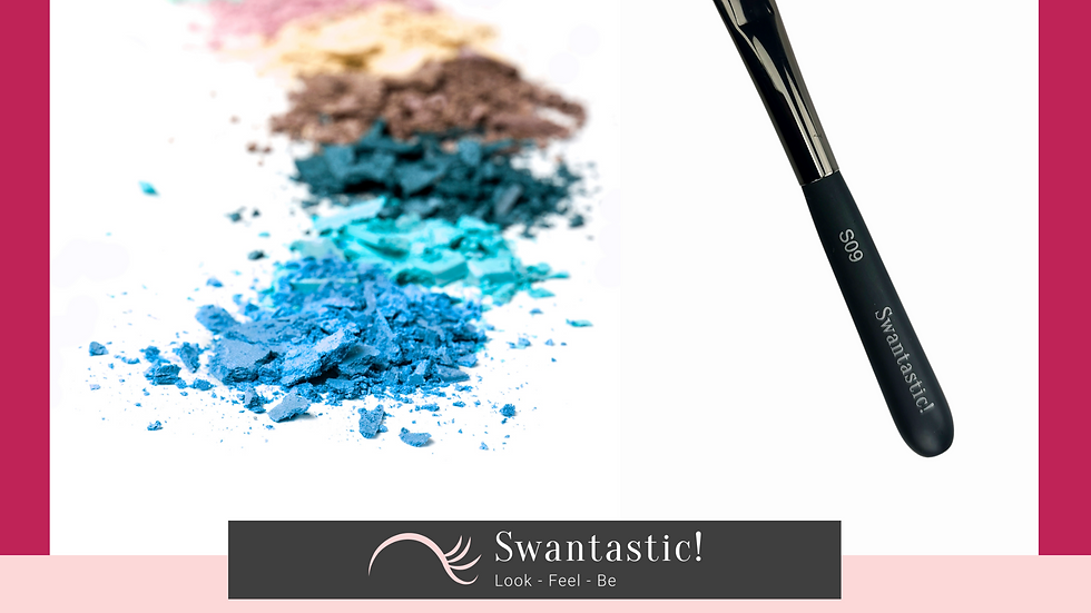 Swantastic! Eyeshadow Brush S09