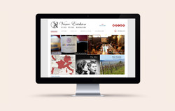 Vance Erickson Website