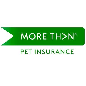more-than-pet-insurance-logo