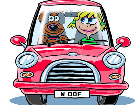 Don't risk a £5000 fine this Xmas!