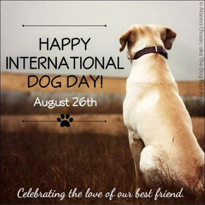 International Dog Day: Pups prove beneficial for health