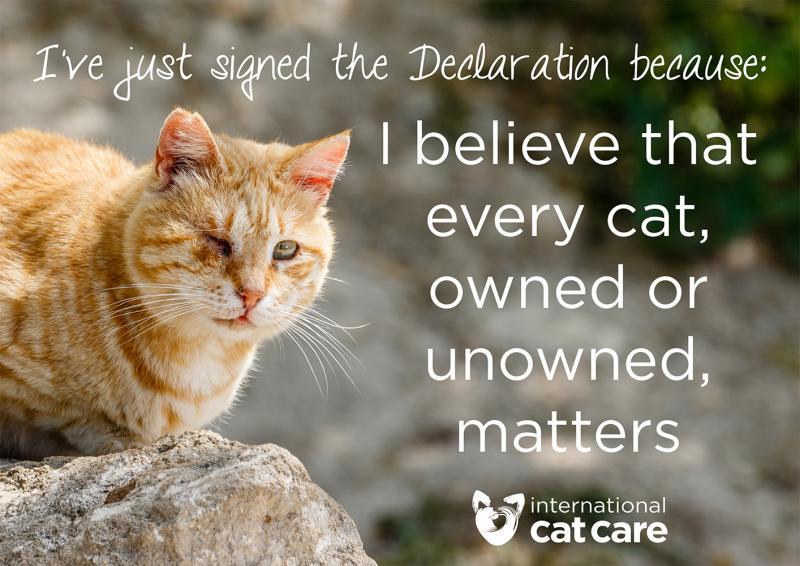 declaration-sign