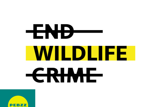 #ENDWILDLIFECRIME INITIATIVE AIMS TO END WILDLIFE CRIME – FOR GOOD!