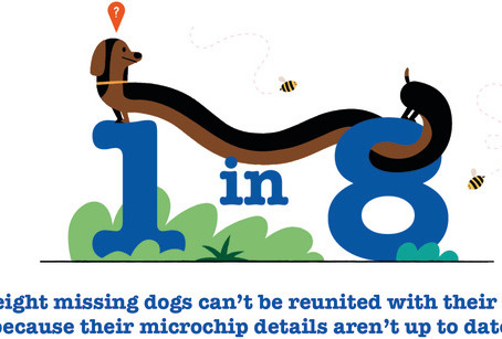 Are you and your dog ready for Spring?