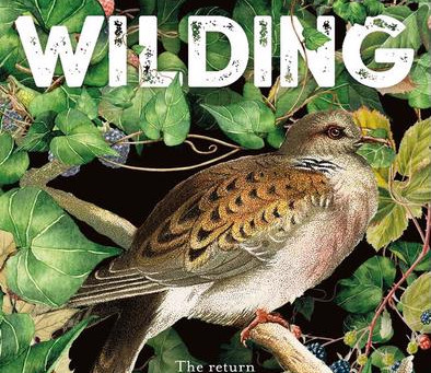 Wilding - The Return Of Nature To An English Farm - now in paperback