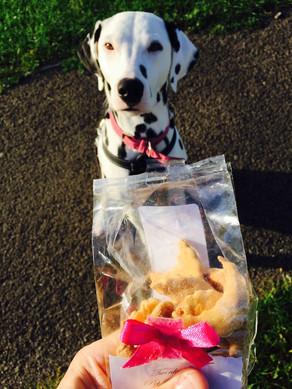 Twinky's Pet Bakery - Delicious & Healthy Pet Treats