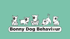 Introducing Bonny Dog Behaviour -  Dog Trainer and Behaviour Consultant in Surrey and South West Lon